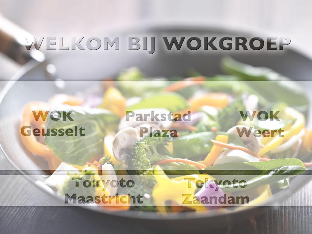 wokgroep.nl